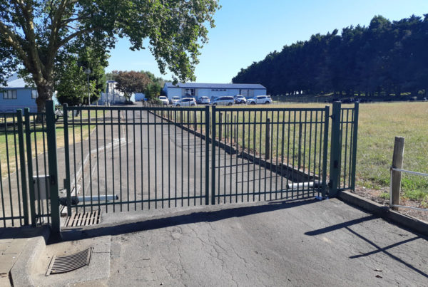 Double swinging 1.5m panel gates